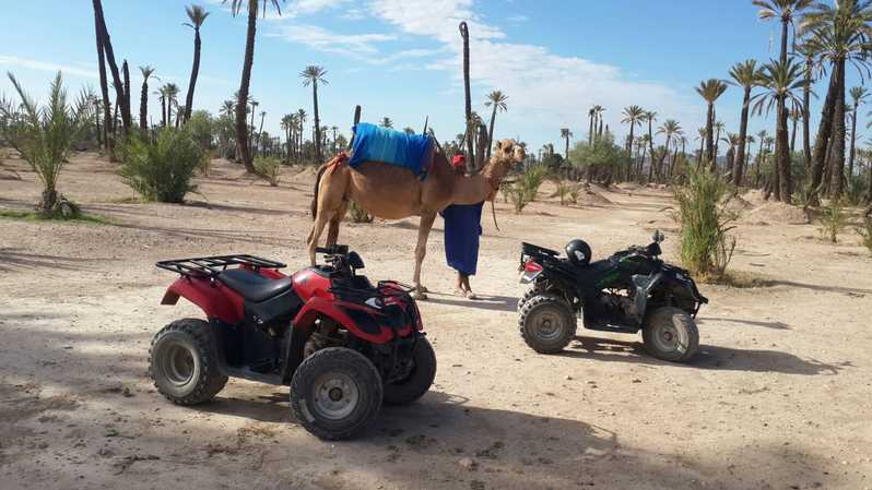 marrakech quad tours